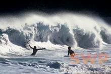 Storm Waves HB-RC10