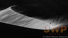 Namib Dunes, monochrome WO-1626M