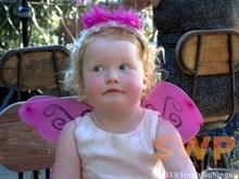 Butterfly Queen HB-41