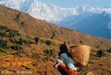 Annapurna View LB-1