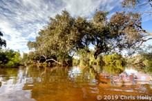Outback Billabong CH-20