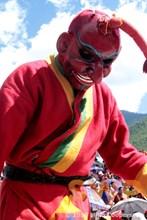 Masked Dancer Coop-6