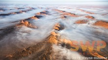 Desert Mist WO-0887